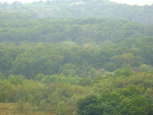 DMZ, Dorasan Observatory, illegal photo of buffer